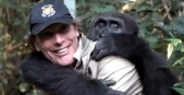 Man reunited with gorilla he raised after five years apart